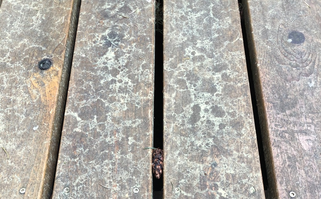 Wood deck with pollen puddles
