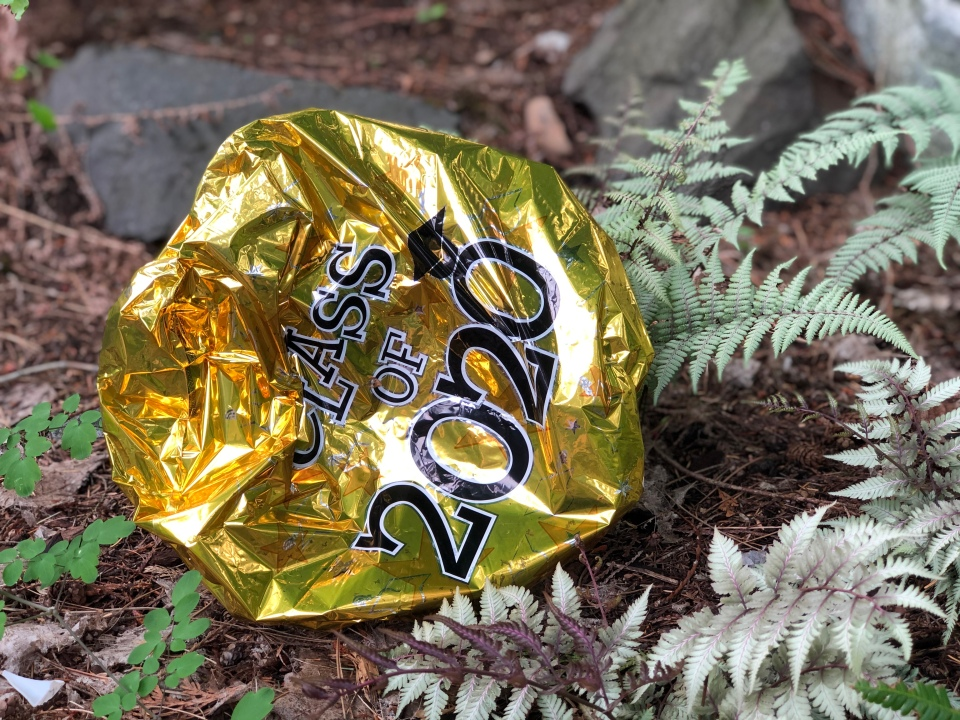 "Deflated Mylar balloon saying, ""Class of 2020"" on the ground in our garden"